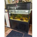 Large Fish Tank with Pumps and Filters
