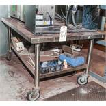 """Stainless Steel Rolling Table 30"""" x 48"""" x 24"""" Tall, No Contents"""
