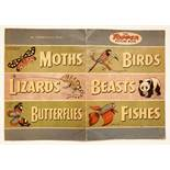 Topper Picture Book (1954) The first Topper Book. Large format featuring Birds, Beasts, Reptiles and