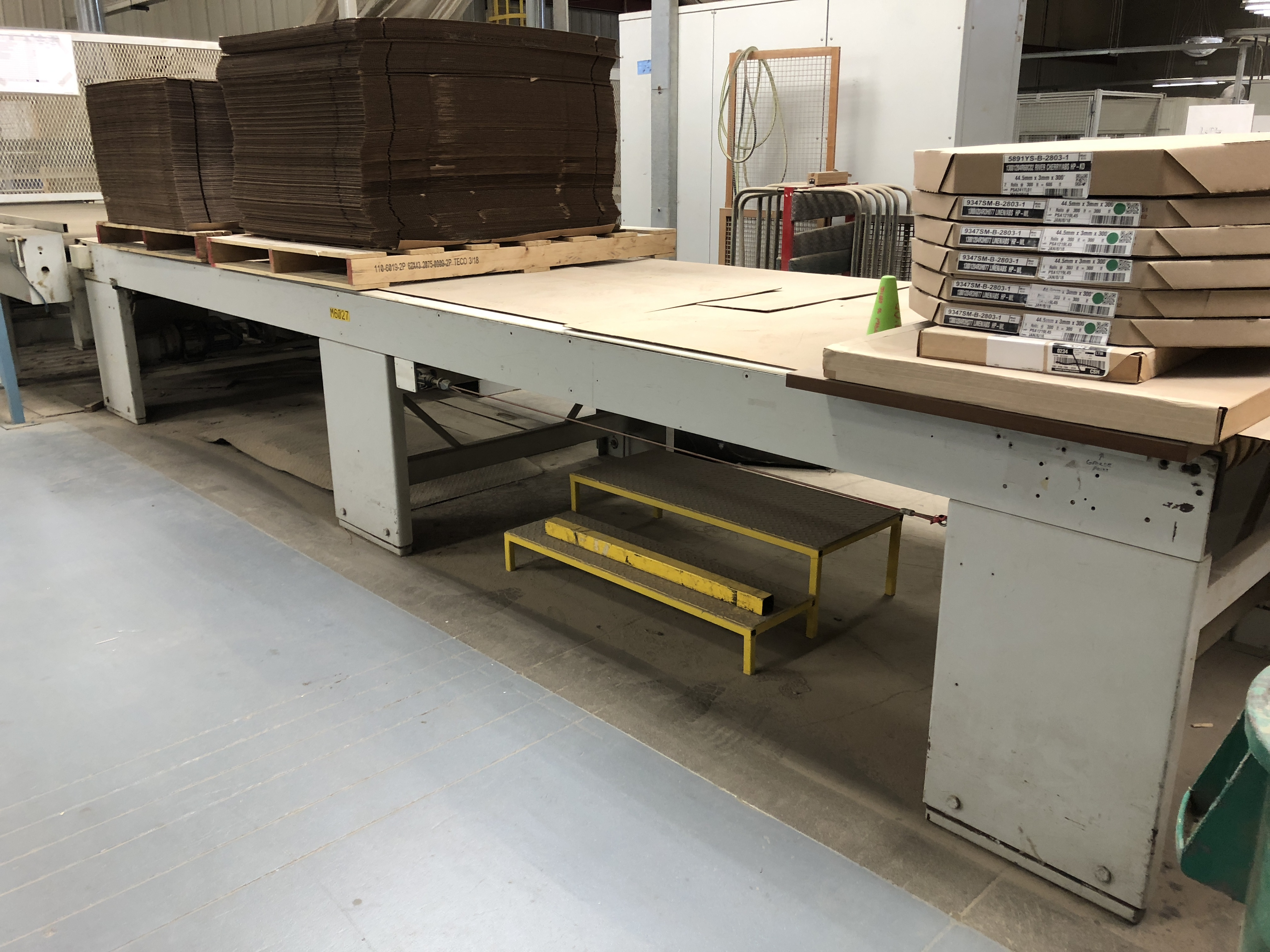 CEFLA PANEL FLIPPER (WITH INFEED AND OUTFEED BELT CONVEYORS) - Image 9 of 11