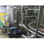 4 x pumps, 1000 litre process tank, valves and pip