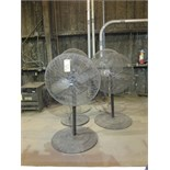 LOT OF PEDESTAL FANS (5), 32""