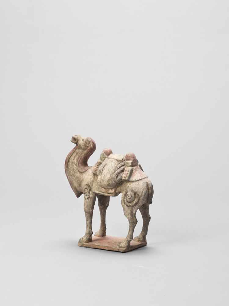A TERRACOTTA MODEL OF A CAMEL, TANG - Bild 3 aus 6