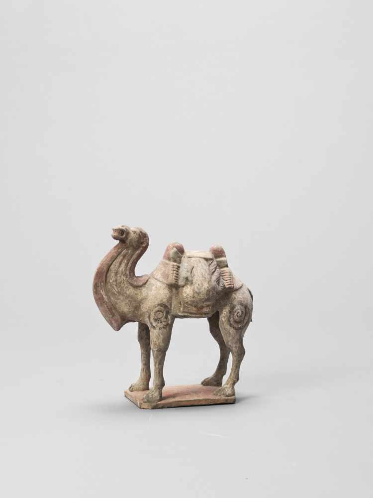 A TERRACOTTA MODEL OF A CAMEL, TANG