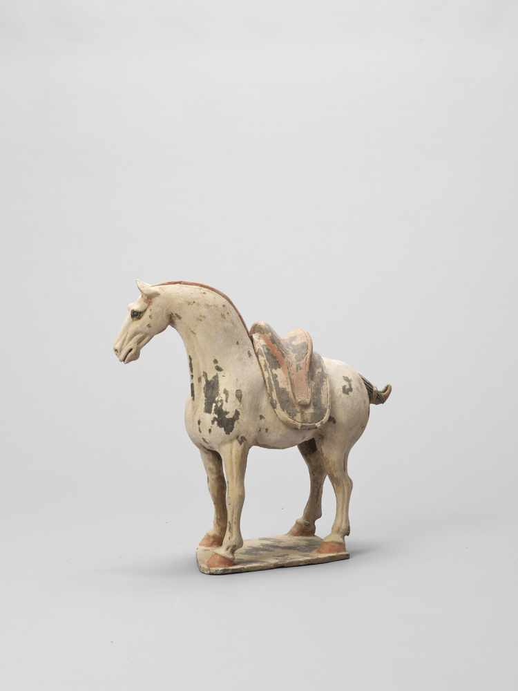 A TL-TESTED TERRACOTTA MODEL OF A HORSE, EARLY TANG - Bild 2 aus 6