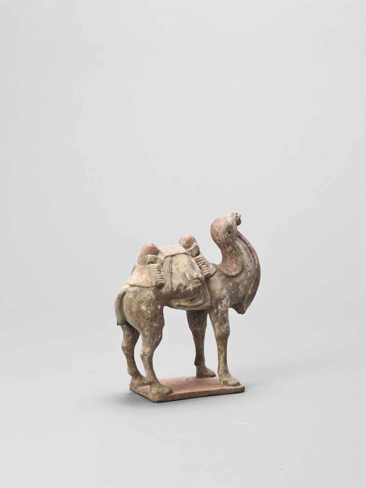 A TERRACOTTA MODEL OF A CAMEL, TANG - Bild 4 aus 6