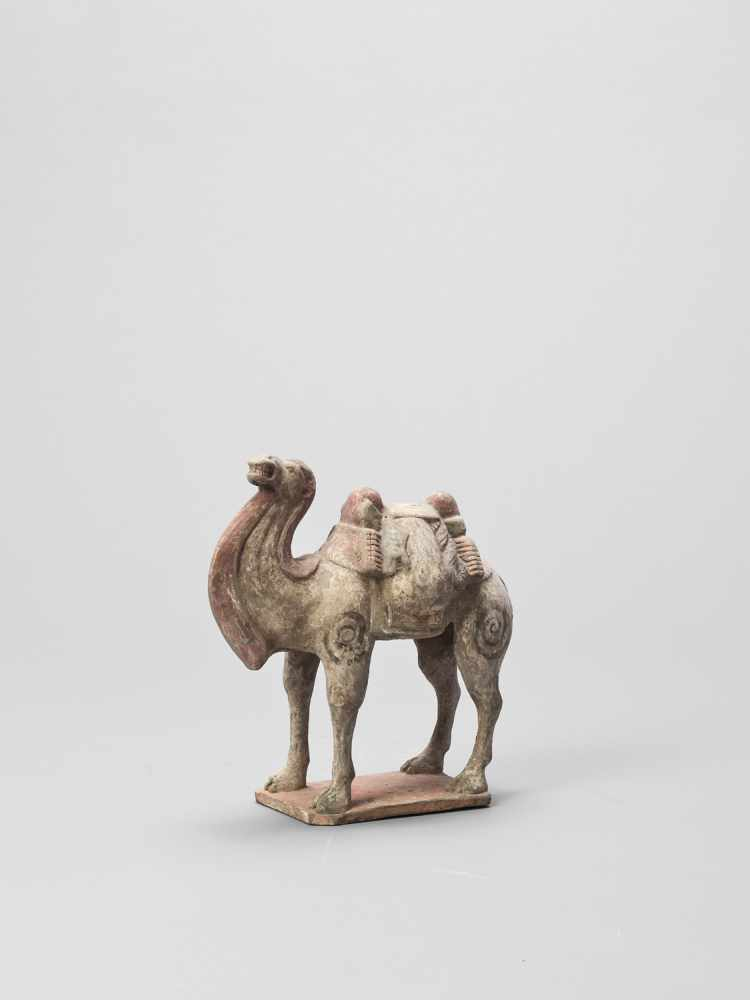 A TERRACOTTA MODEL OF A CAMEL, TANG - Bild 2 aus 6