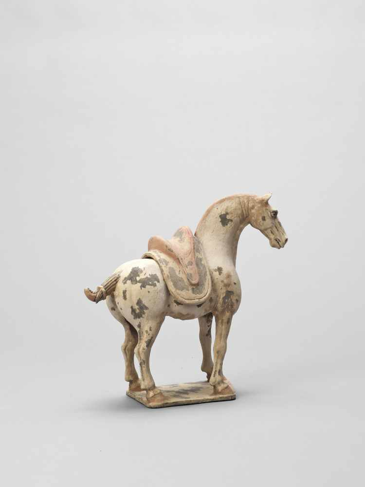 A TL-TESTED TERRACOTTA MODEL OF A HORSE, EARLY TANG - Bild 5 aus 6