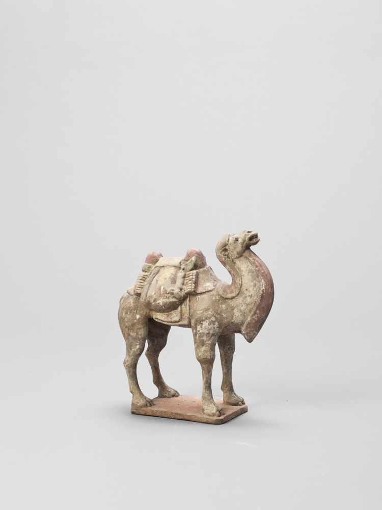A TERRACOTTA MODEL OF A CAMEL, TANG - Bild 5 aus 6