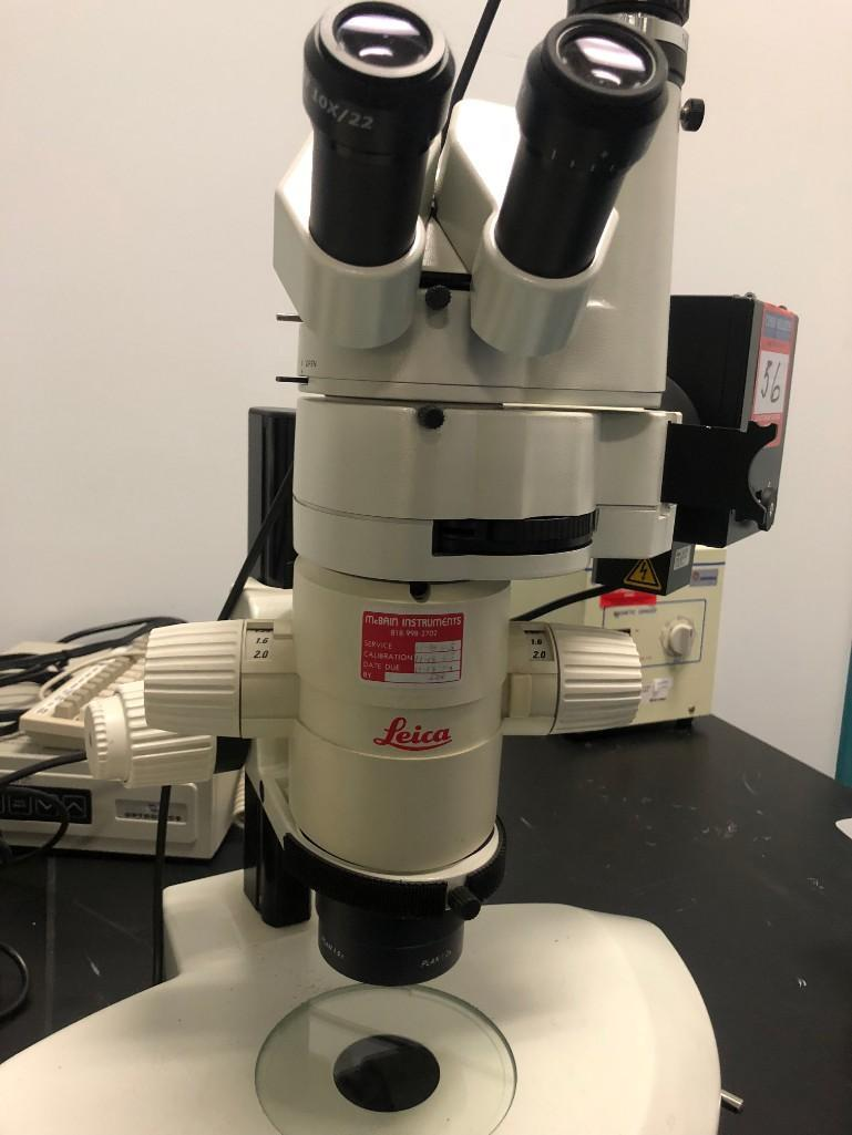 Lot 56 - Leica Florescent Stereo Microscope
