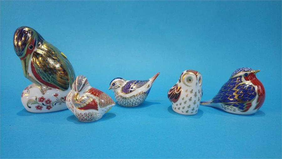 Lot 28 - Five Royal Crown Derby paperweight of birds (no boxes or certificates).
