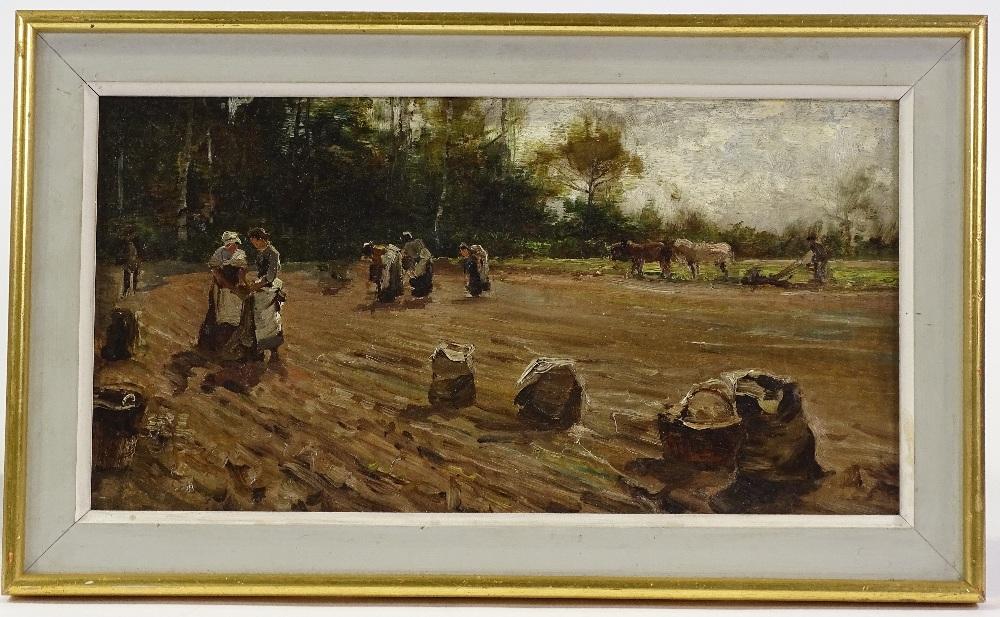 Lot 1004 - A 19th century English school oil on canvas, potat