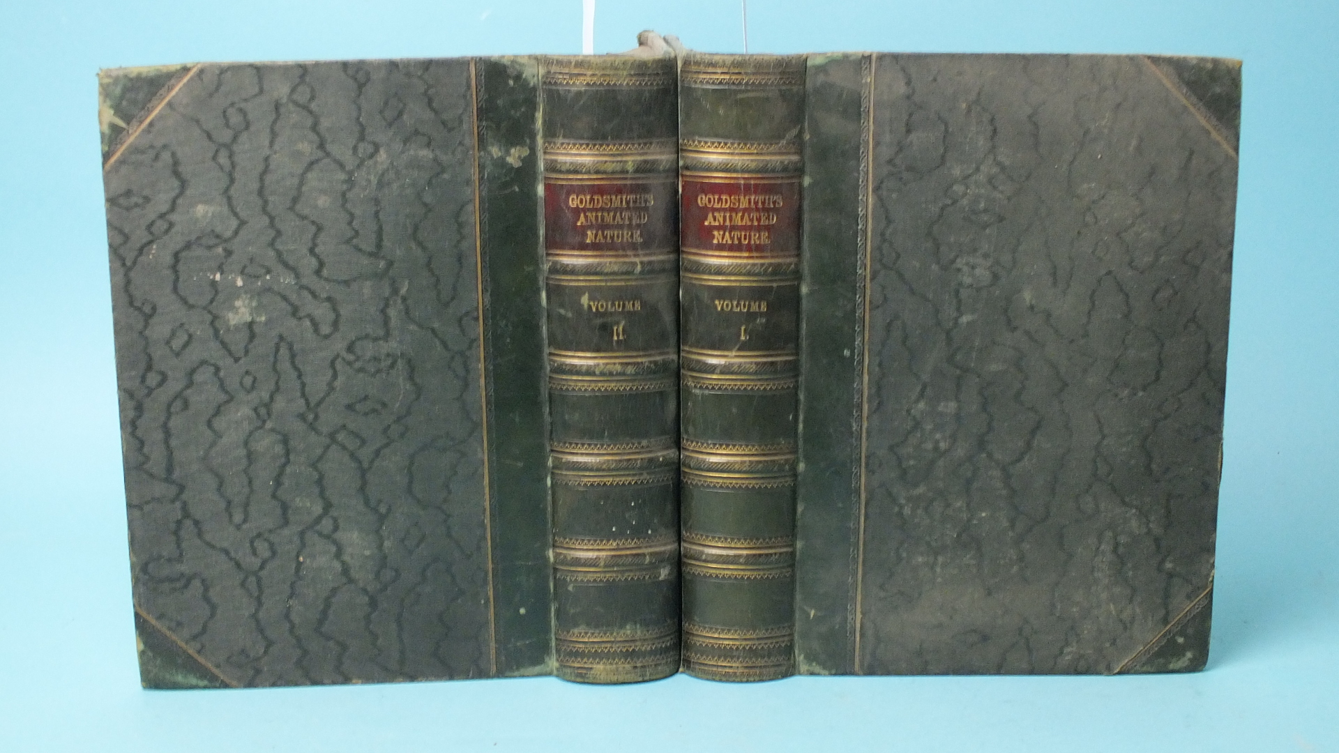 Lot 23 - Goldsmith (Oliver), A History of the Earth and Animated Nature, 2 vols, hd col vig tps, plts, some