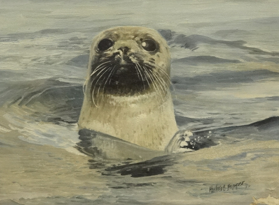 Lot 30 - Hubert Pepper, two oil on canvas, Seals, unframed, largest 40 x 51cm, smallest 30cm x 41cm, some