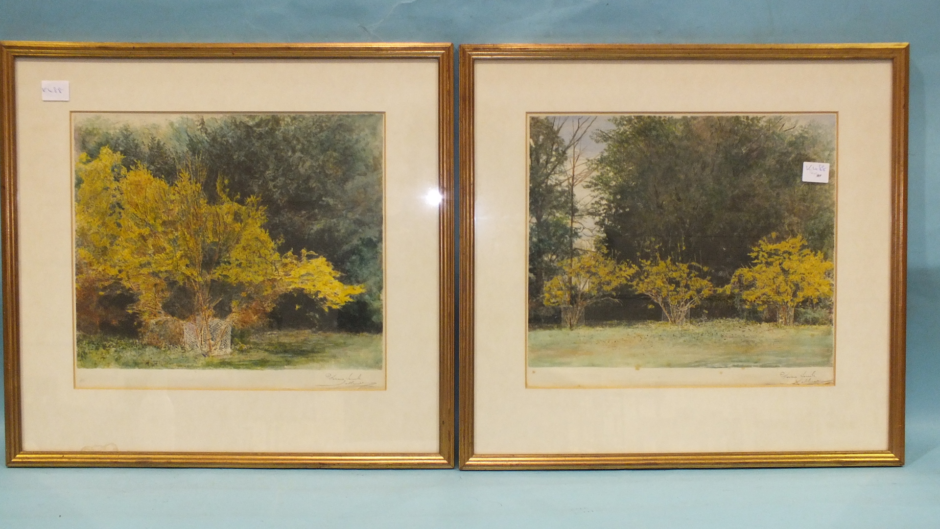 Lot 230 - A set of four watercolour studies of woodland, shrubs and trees, indistinctly-signed in the