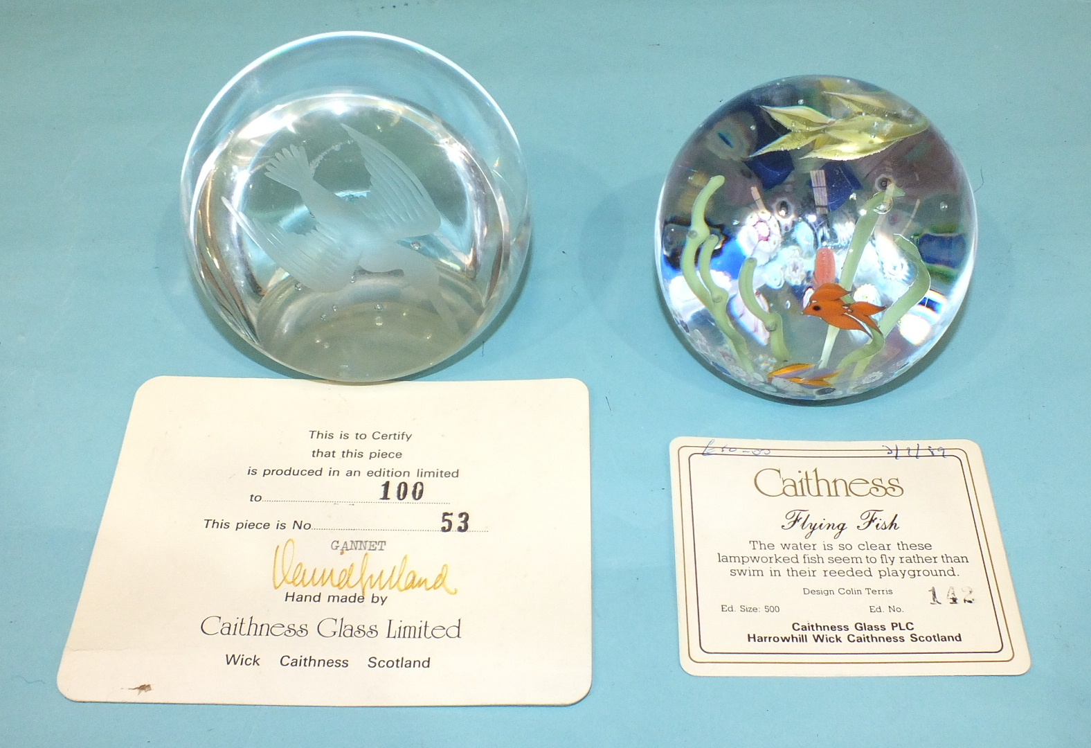Lot 245 - Two Caithness limited-edition glass paperweights 'Gannet' 53/100 and 'Flying Fish' 142/500, with