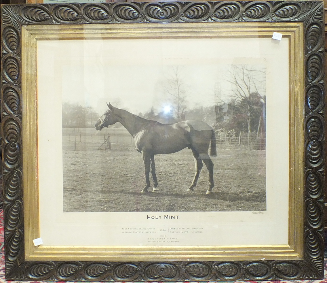 Lot 224 - A photograph of the race horse 'Holy Mint', 59 x 73cm, inscribed with a list of races won in 1904/