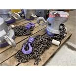 CM 2-Ton Chain Hoist, s/n A486LV