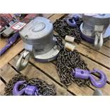 CM 2-Ton Chain Hoist, s/n 3692
