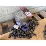 BUDGIT 1/2 Ton Chain Hoist, s/n M505060-1