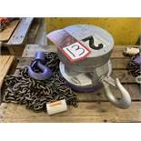CM 2-Ton Chain Hoist, s/n A484LV