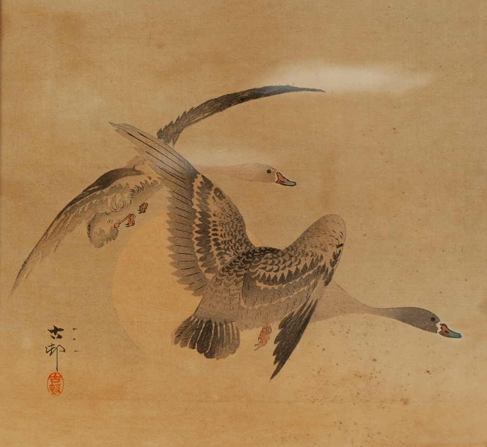 Lot 348 - CHINESE SCHOOL (LATE 19th/EARLY 20th CENTURY) BLACK INK AND WATERCOLOUR DRAWING Two geese in