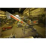 """S/S Incline Auger Conveyor, with Aprox. 102"""" L Auger, with Marathon 3/4 hp Motor, Mounted on S/S"""