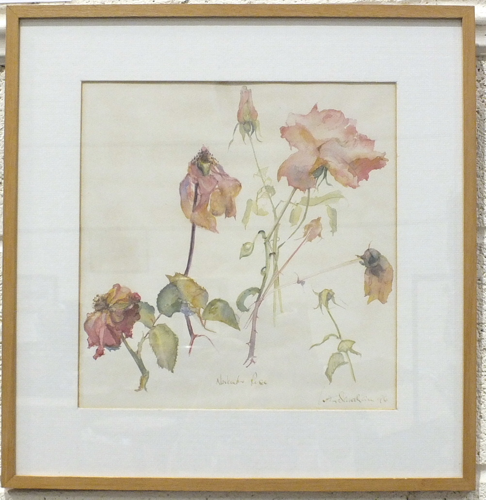 Lot 102 - •Betty Sandham NOVEMBER ROSES Signed watercolour, dated '96, 31 x 30cm.