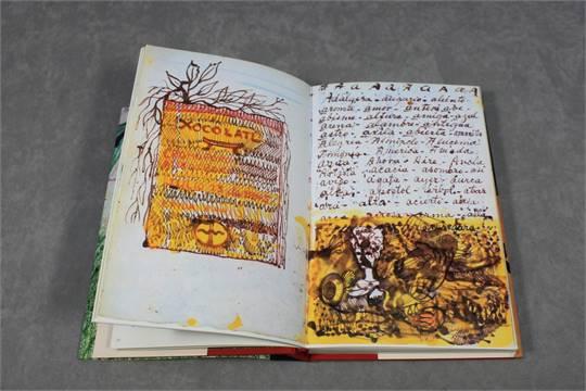 Künstlertagebuch von Frida Kahlo