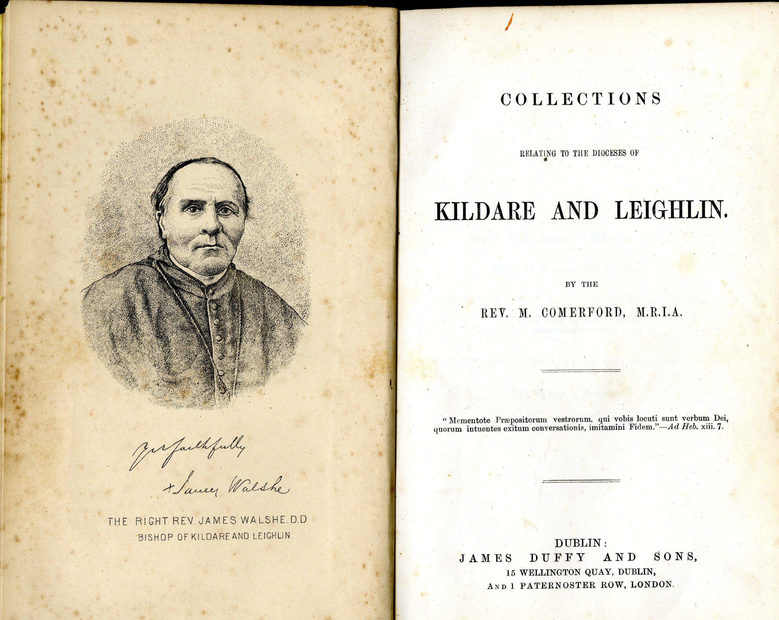 Kildare & Leighlin: Comerford (Rev. M.