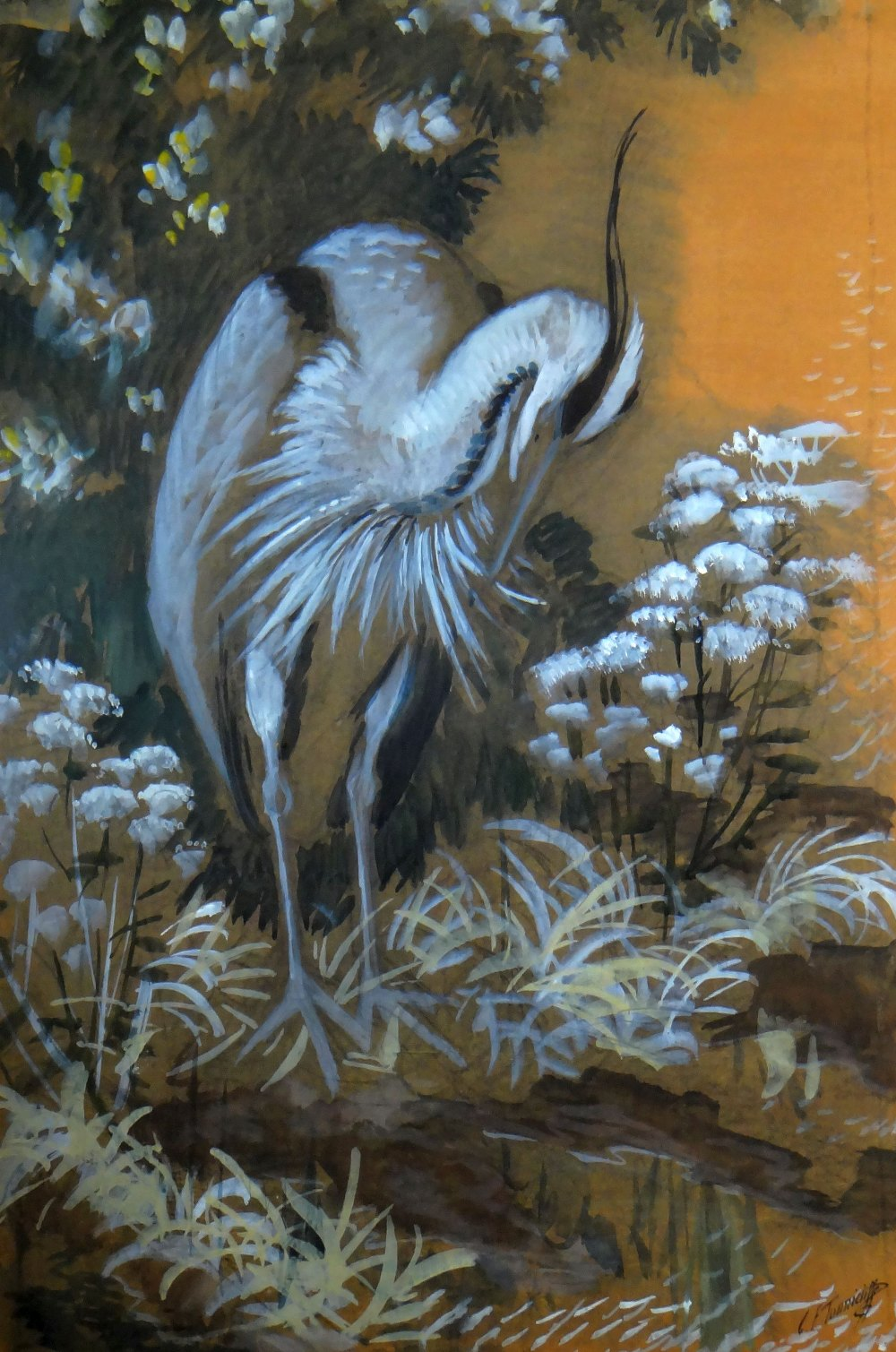Lot 141 - CHARLES FREDERICK TUNNICLIFFE watercolour and pencil - study of a grey heron amongst vegetation,