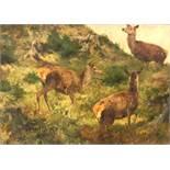 Franz Xavier VON PAUSINGER (1839 - 1915). Three red deer.55 cm x 79 cm. Painting. Oil on canvas.