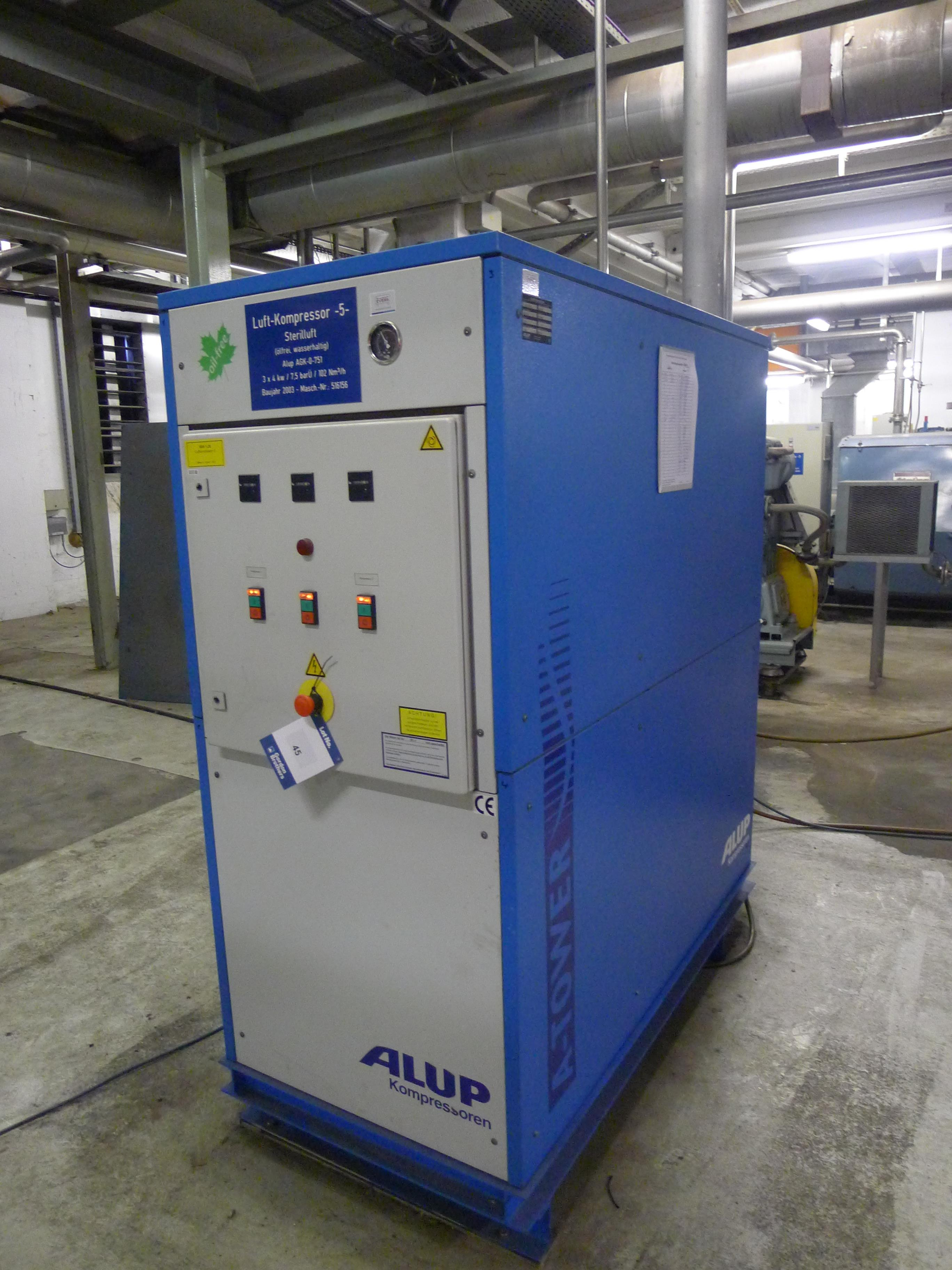Lot 45 - Alup type A-Tower compressor 102 Nm3/hr. 7.5 bar. New 2003. (Dismantling and Loading Fee: €250)