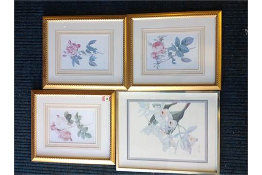 A Gloria Eriksen Print Of A White Orchid Mounted And In