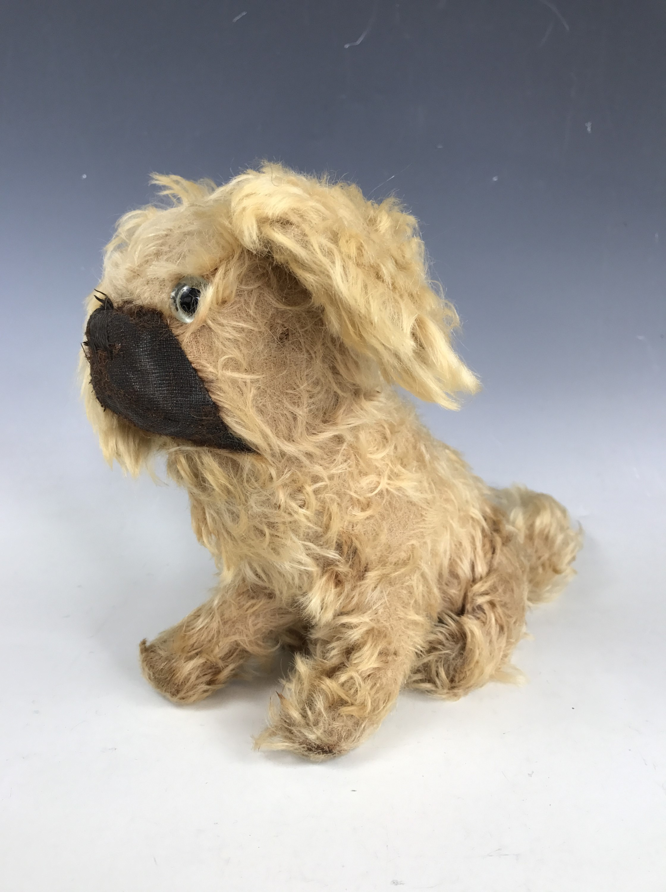 Lot 50 - A vintage toy dog, having golden mohair, a single glass eye, and a brown mohair muzzle, wood wool