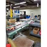 Hytrol Belt Conveyor 21' x 1' SN: 336836 Rigging Fee: $250