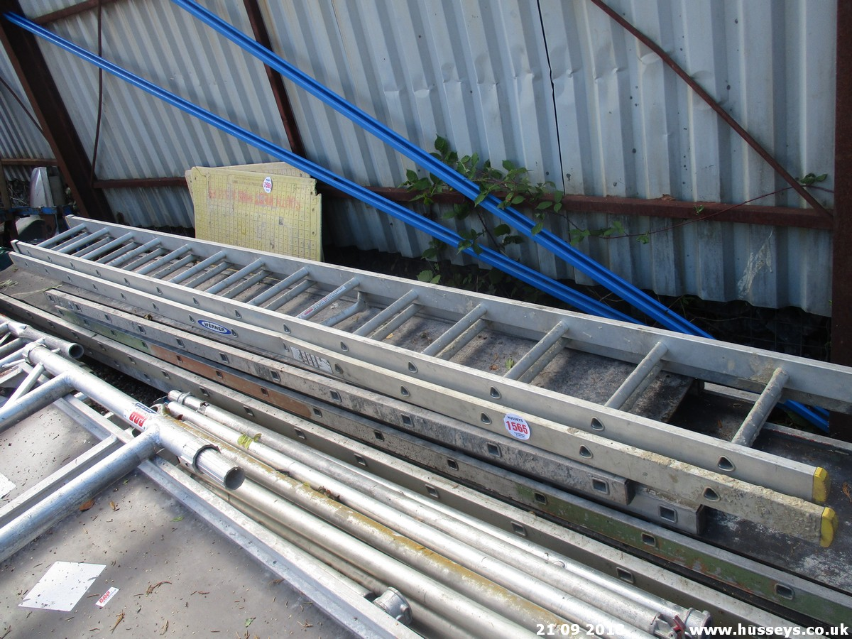 Lot 1565 - 5 STAGING BOARDS & EXTENDING LADDER