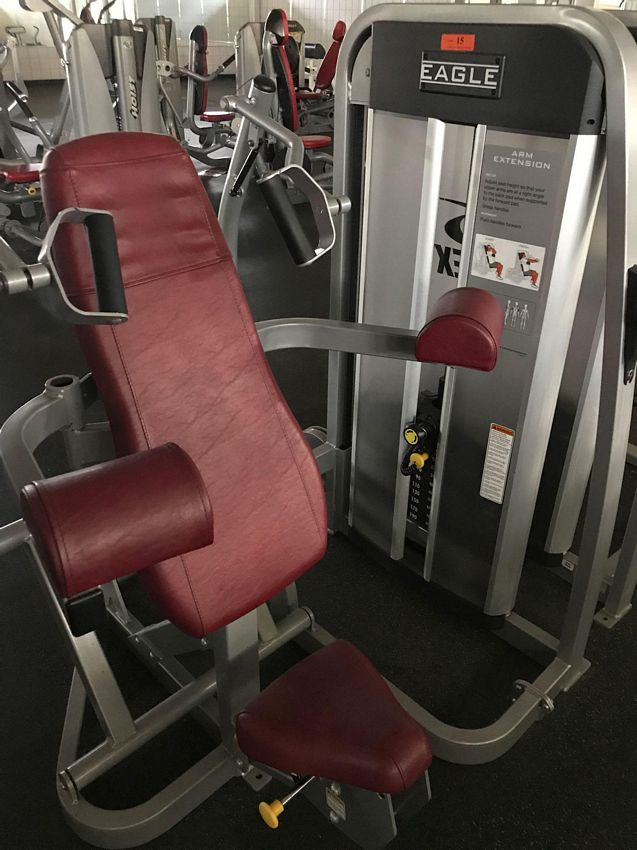 Lot 15 - (THIS ITEM NO LONGER FOR INDIVIDUAL SALE) CYBEX EAGLE ARM EXTENSION MACHINE