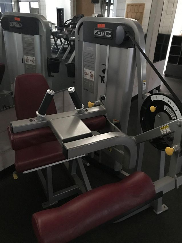 Lot 21 - (THIS ITEM NO LONGER FOR INDIVIDUAL SALE) CYBEX EAGLE SEATED LEG CURL