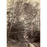 Famin, Constant Alexandre: Path in woods