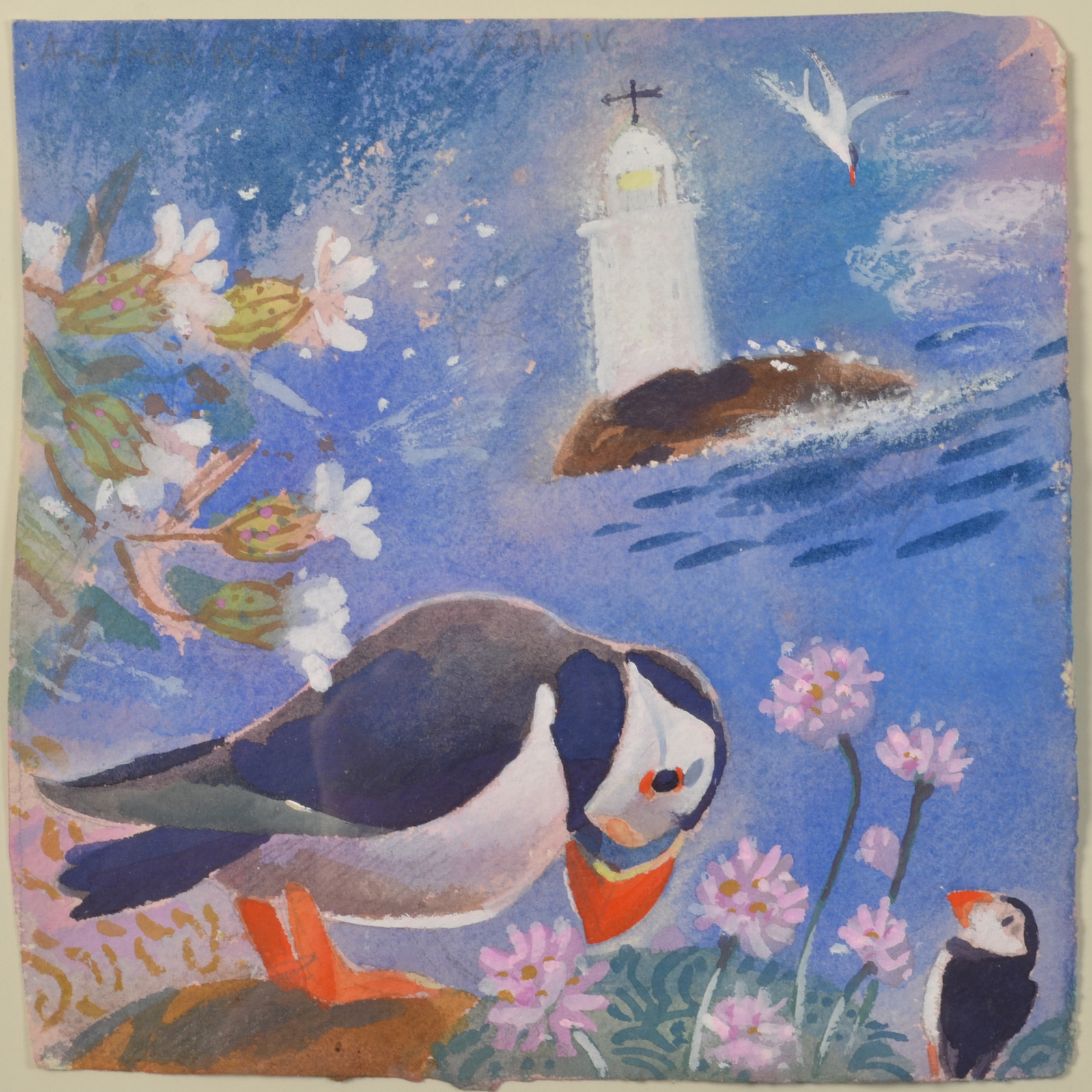 Lot 11 - ANDREW WADDINGTON Puffin Watercolour Signed Dated 2004 21 x 21cm