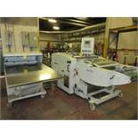 2006 Palamides Model Delta 703 Stream Delivery Automatic Bander w/Air Jets s/n 13.00410, 3-Banding