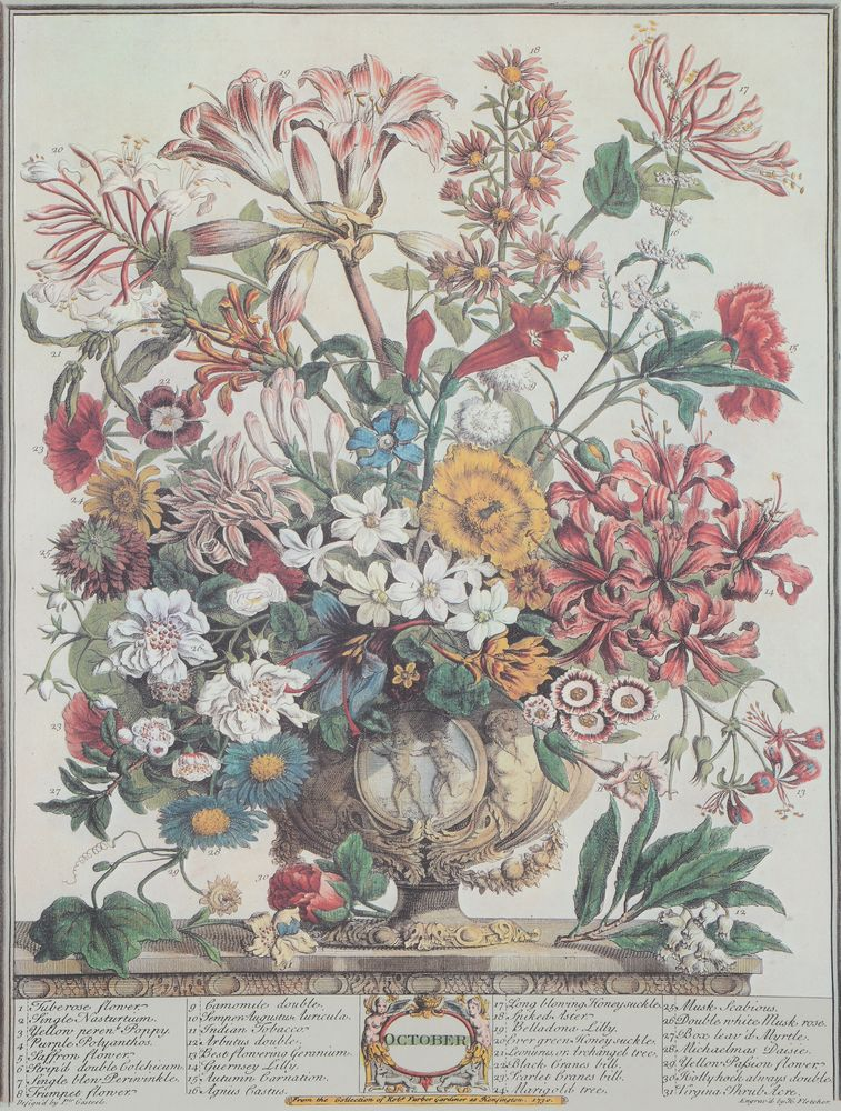Lot 180 - A set of twelve 'Months of Flowers' prints after coloured engravings by H. Fletcher