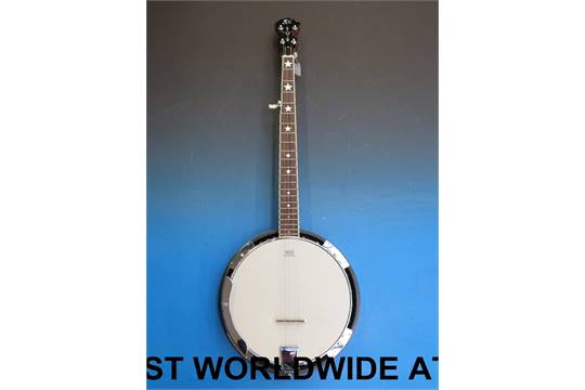 An SX Remo banjo (in soft case)