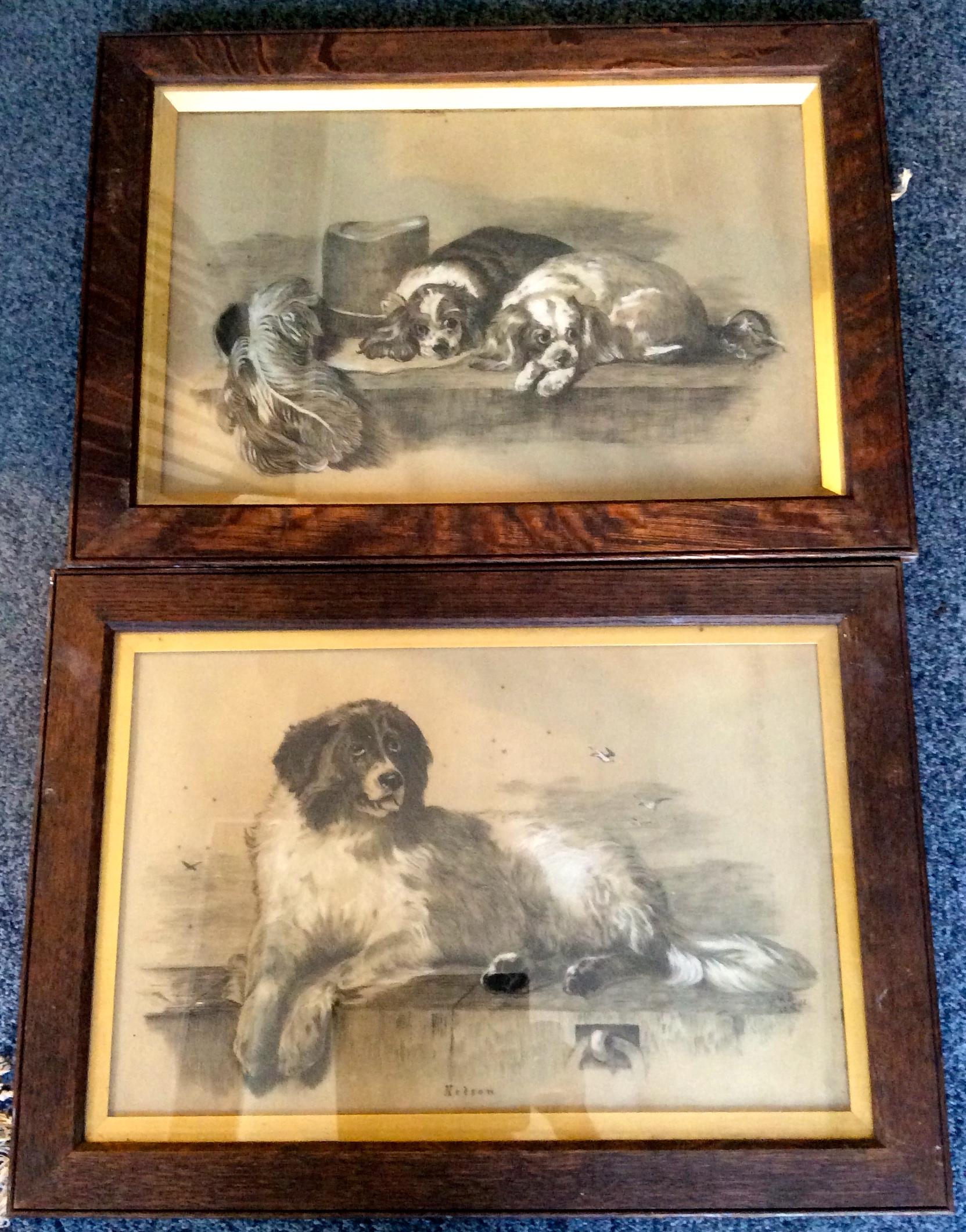 Lot 467 - Two good quality pencil sketch dog portraits monogrammed E W B '81