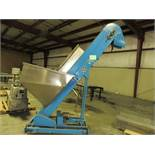 Capem Consolidated Packaging Machinery, with Stainless Steel Hopper Model #EA-8 Incline Cleat