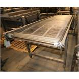 "Aprox. 10 ft L x 36"" W x 40"" H S/S Conveyor, with S/S Belt, Electric Drive (Located Pittsburgh, PA)"