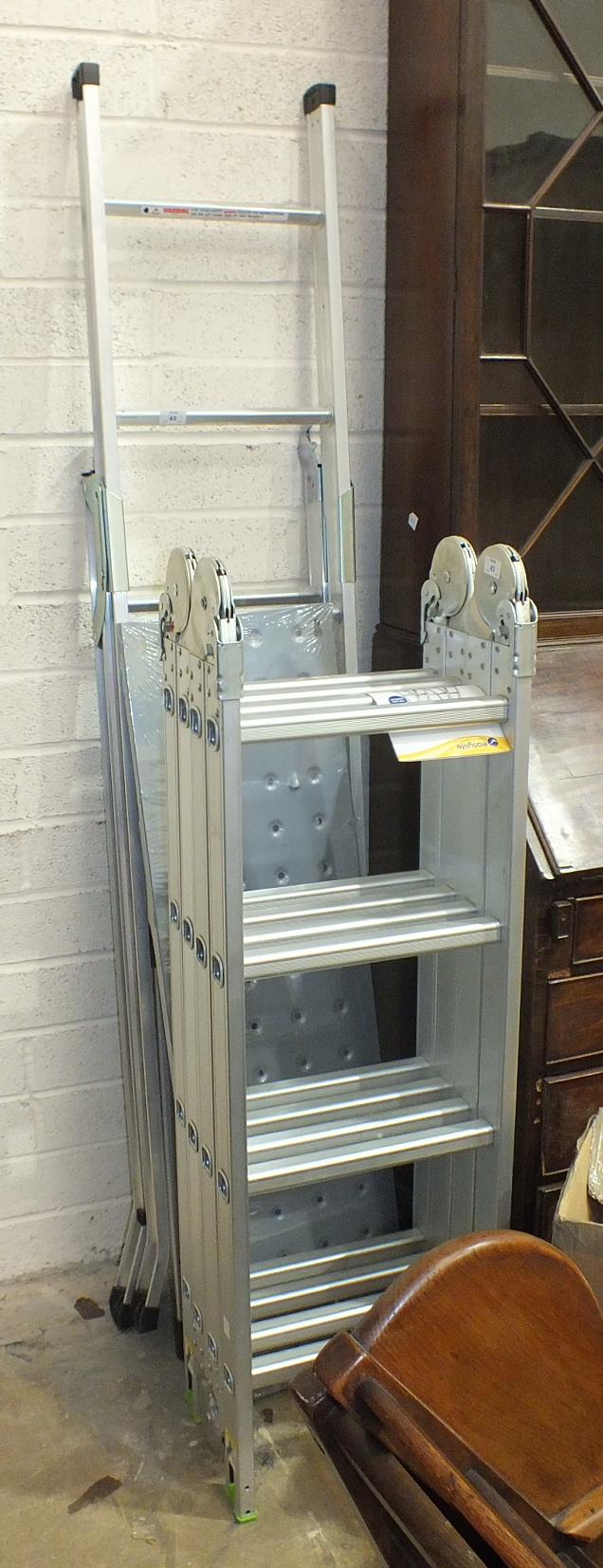 An Easylife Versatile Ladder model no.EL3625 and a loft ladder, (2).
