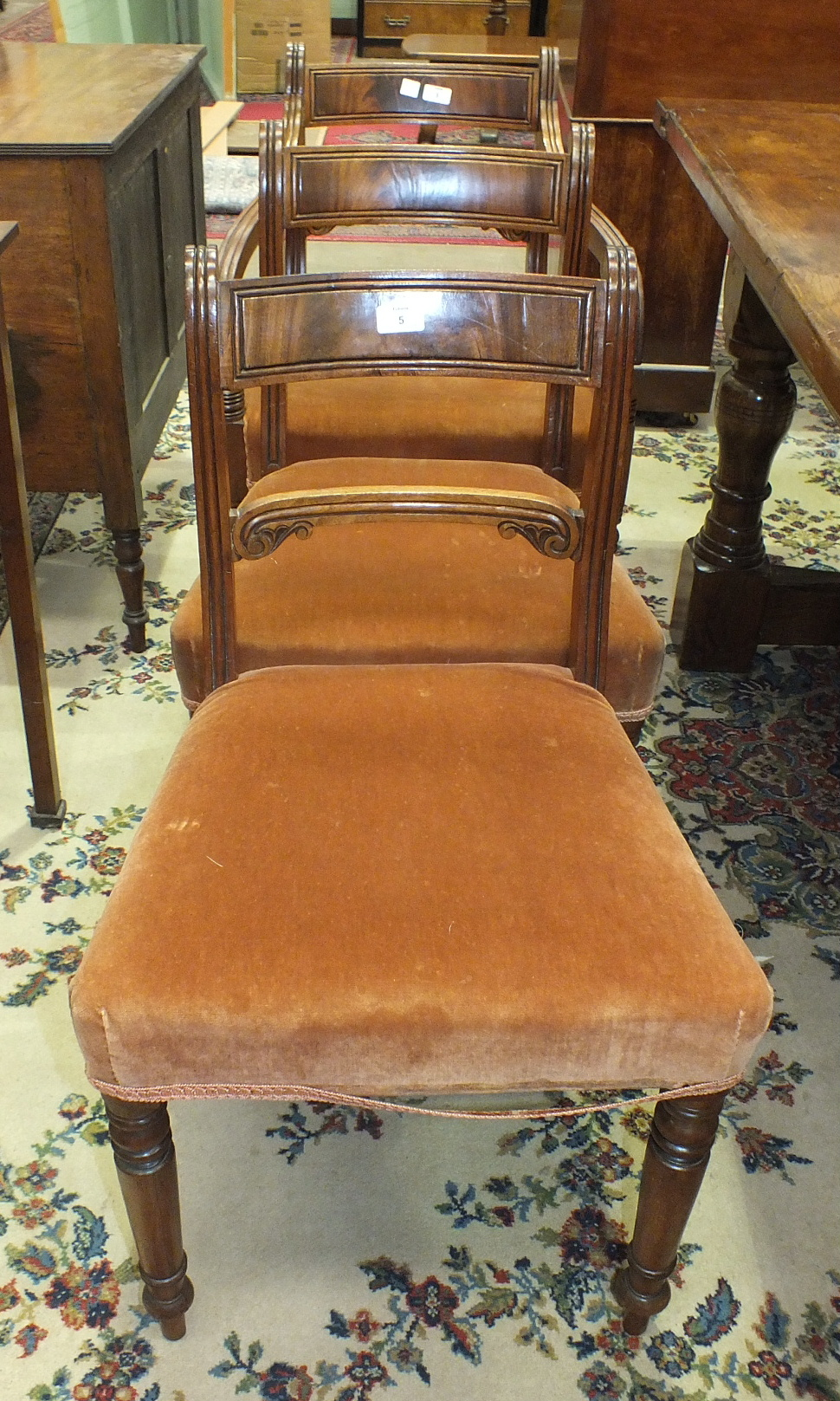 Lot 5 - A set of six late-19th century mahogany Regency-style dining chairs on turned front legs, includes