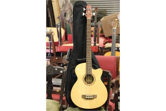 Tenson Guitars Bass Bass Guitar in Canvas Case